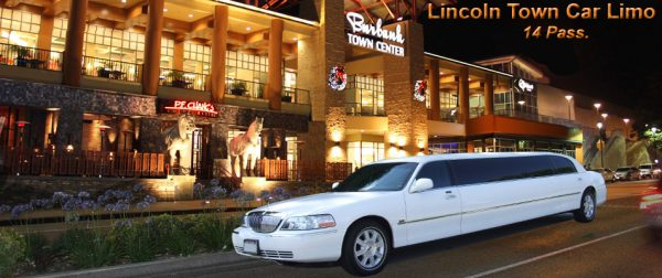 Lincoln Limousine – up to 14 pass.